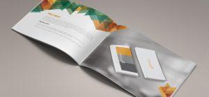 mdg-book-4